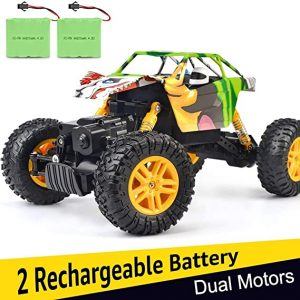 4WD DOUBLE Off-Road RC Truck